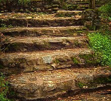 Goals Are Achieved One Step At A Time by pat gamwell