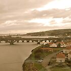 View of Scotland from the train by LeanneDixon