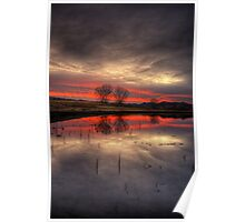 Gunmetal Pink with Trees Poster