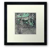 Cement with a Dash of Spearmint Framed Print