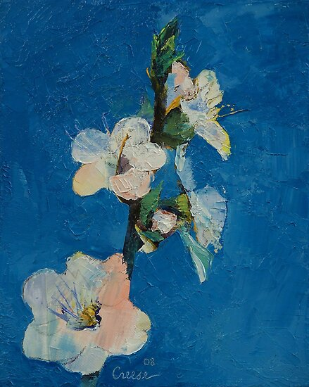 Apricot Blossom by Michael Creese
