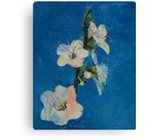 Apricot Blossom Canvas Print