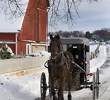 Horse and Buggy in December by Mark Van Scyoc