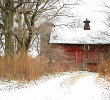 Yankee Road Barn by Judy Seltenright