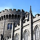 Dublin Castle by Joe  Burns
