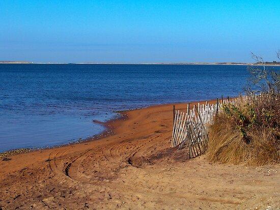 Napeague Bay by Dandelion Dilluvio