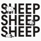 Sheep Sheep Sheep by mmcrae