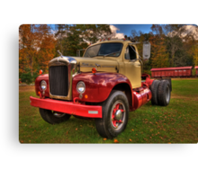 Mack  Canvas Print