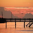 Sunset and the Fishing Dock by Rosalie Scanlon