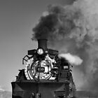 Engine 488, Cumbres & Toltec Railway by TheBlindHog