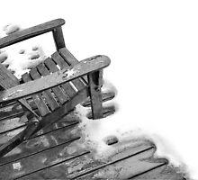 December thaw by Susana Weber