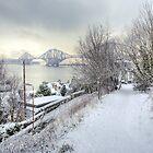 Snowy Lane by Tom Gomez