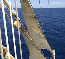 "Sailing: Clipper ""Sir Robert"" 11 - www.sir-robert.com by Frank Schneider"