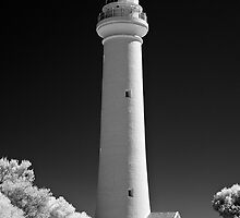 Split Point Lighthouse by Akif  Kaynak