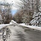 Private Country Road by Deborah  Benoit