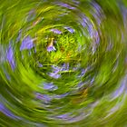 bluebell vortex by jonnybaker