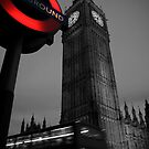 Westminster Tube by Miguel De Freitas