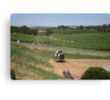 Miles and Miles from Maxwells Mead, McLaren Vale Canvas Print