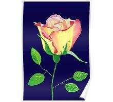 Love in Bloom Poster