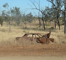 Way Out West-Central Queensland by DecorDiva