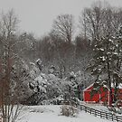one red barn by dc witmer