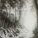 Road less travelled by Freda Surgenor