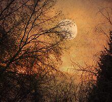 Gilded Sunset by digitalmidge