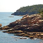 Acadia Coastline by Michele Conner