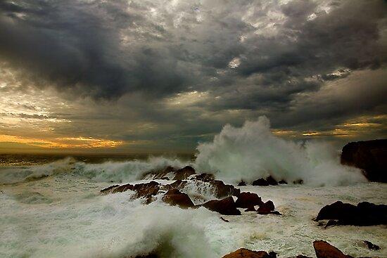 Winter Storm by Maria Draper