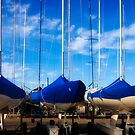 Dressed in Blue - Geelong by Hans Kawitzki