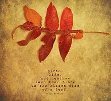 Birth by Tia Allor-Bailey