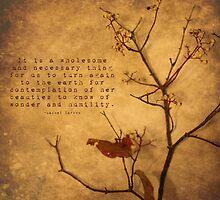 Contemplation by Tia Allor-Bailey