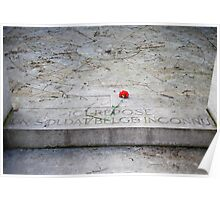 Tomb of an unknown soldier Poster