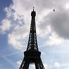 Eiffel Tower with bird by Jaime Pharr
