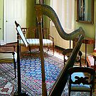 Harp in Living Room by Susan Savad