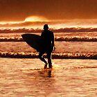sunset surfer by lisaellen