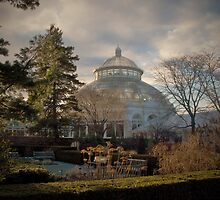 Botanical Gardens In Winter - Bronx, New York © 2009  by Jack McCabe
