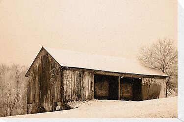 Albert's Barn in Snowstorm by Michael  Dreese