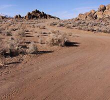 Winding Dirt Road by Kimberly Johnson