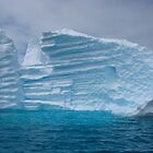 Icy Wonderland by Craig Baron