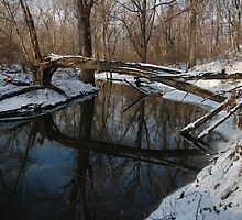 Over the River and Through the Woods by christiane