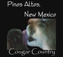 Cougar Country by Vicki Pelham