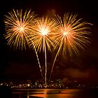 We Three Palms - Sydney Harbour - New Years Eve - Midnight Fireworks  by Bryan Freeman