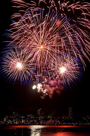 OMG LOOK! - Sydney Harbour - New Years Eve - Midnight Fireworks by Bryan Freeman