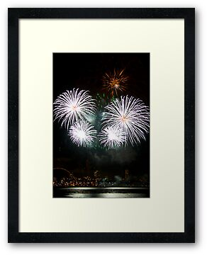 Consider The Lily - Sydney Harbour - New Years Eve - Midnight Fireworks by Bryan Freeman