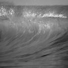 bribie island wave by Matt  Williams