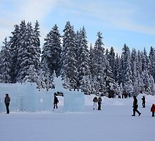 Ice Sculptures by Alyce Taylor