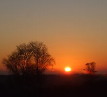 Sunset New Years Day by Christian Byrne Cook