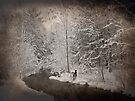 Winter Wonderland by Shelly Harris