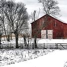 Broadside of a Red Barn by billium